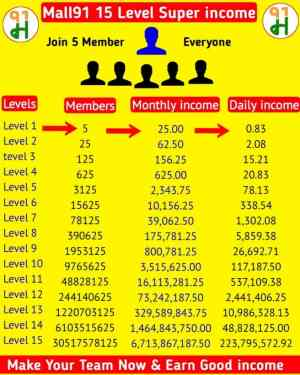 Mall91 App Income Plan chart